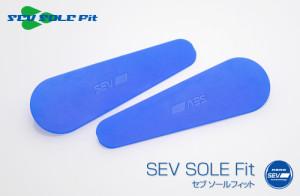 WFN-ssf1